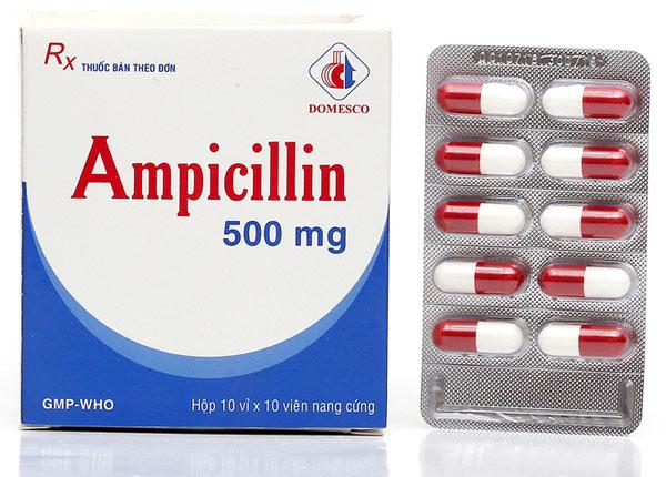 Thông tin về thuốc Ampicillin 500mg