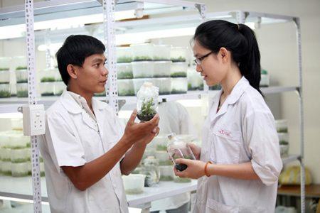 Học ngành Dược sẽ có những tính ứng dụng cao trong cuộc sốngHọc ngành Dược sẽ có những tính ứng dụng cao trong cuộc sống